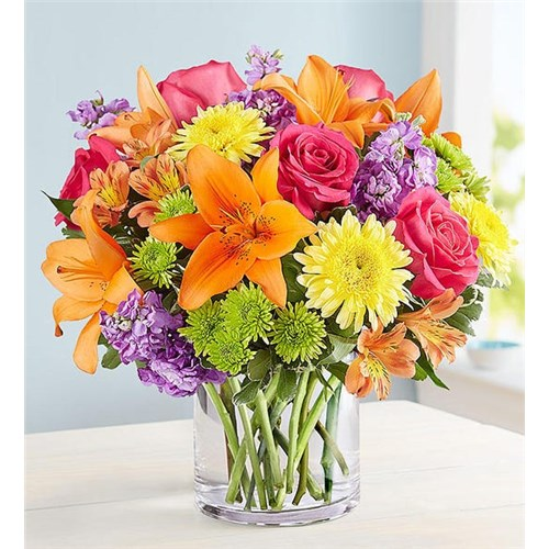 Sonoma Ca Same Day Flower Delivery Send A Gift Today Spring Flowers